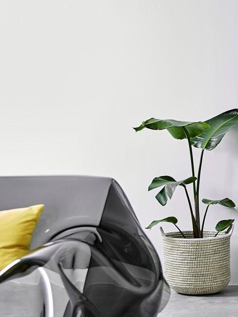 bank met doorschijnende deken en plant in rieten pot
