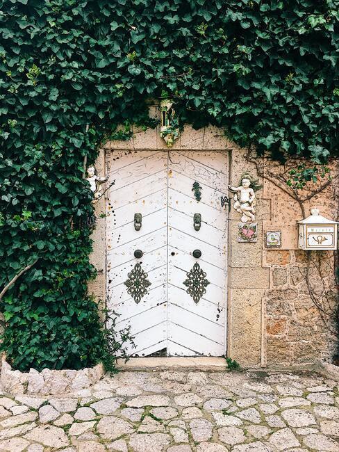 huis met klimplanten bij voordeur