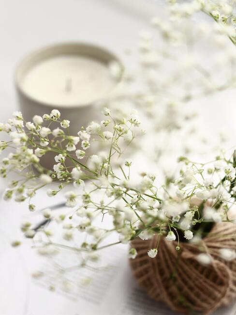 geurkaars met gipskruid op witte tafel