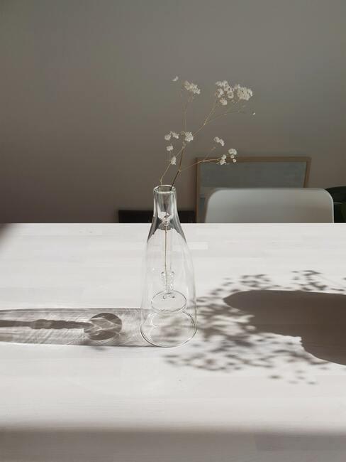 gipskruid als decoratie in vaas