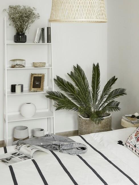 lichte kamer met plant en gestreept dekbed