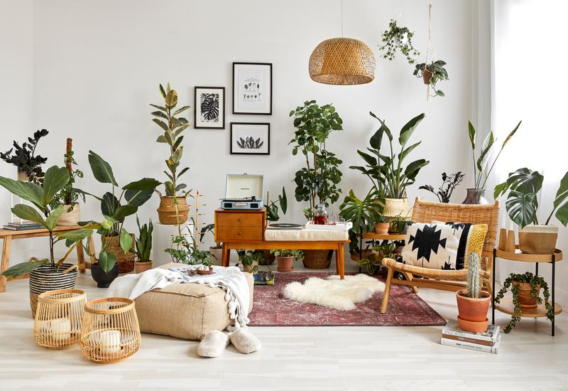 Woonkamer in jaren 70 stijl met planten