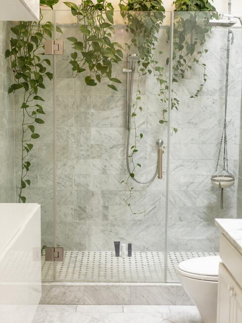 marmere badkamer met glazen deur en planten