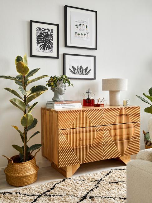 Licht houten dressoir met woonkamer planten