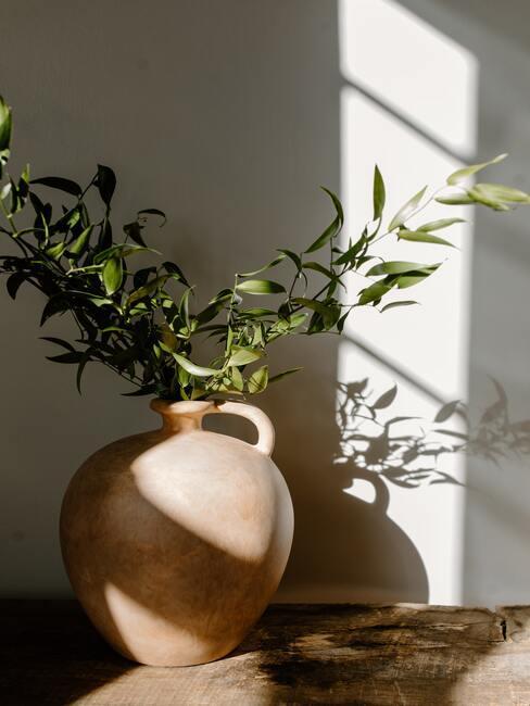 Terracotta vaas met planten