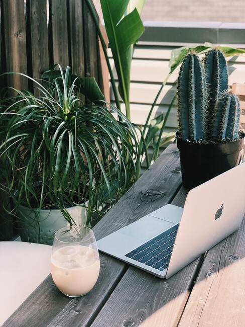 Thuiswerkplek buiten met planten