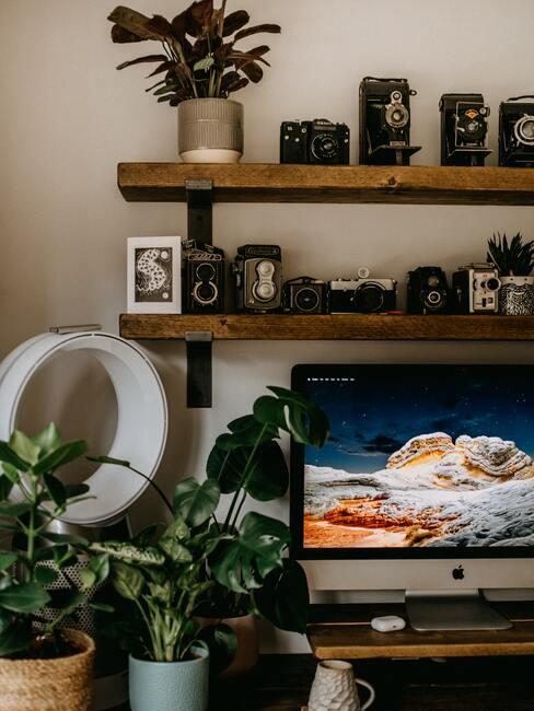 Thuiswerkplek met planten