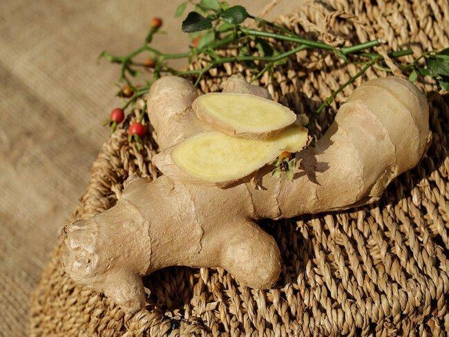 Gember kweken: bloeiende zaailingen in de grond