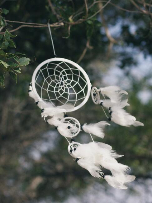 witte dromenvanger in boom