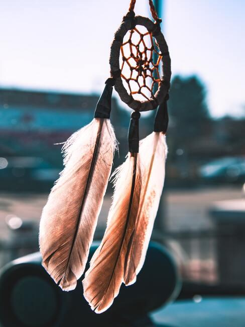 roze veren aan dromenvanger