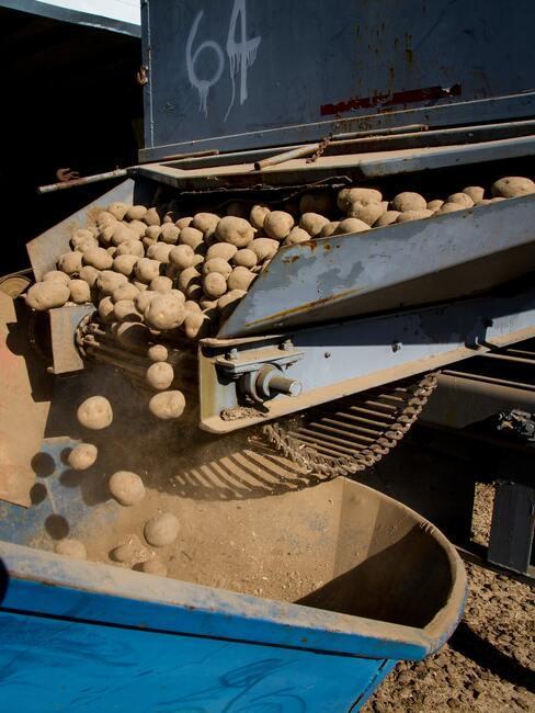 aardappels oogsten met een machine