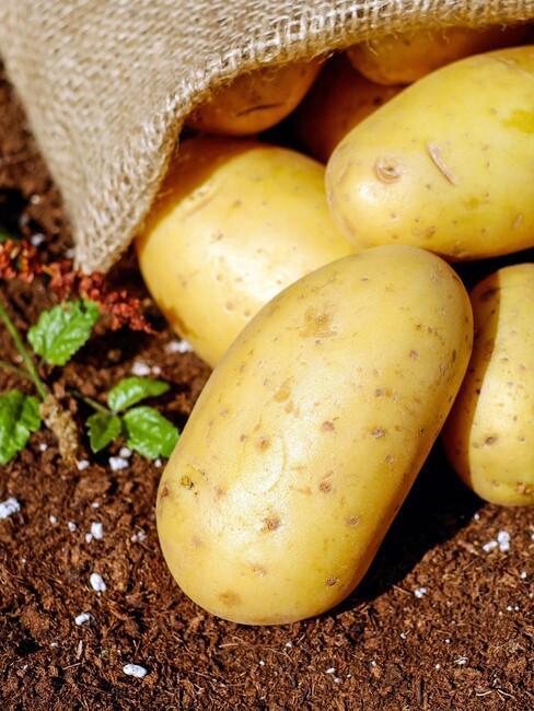aardappels in jute zak