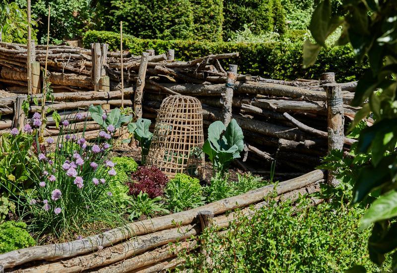 houten moestuin met planten