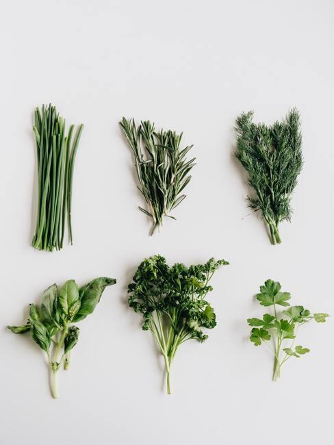 groene kruiden