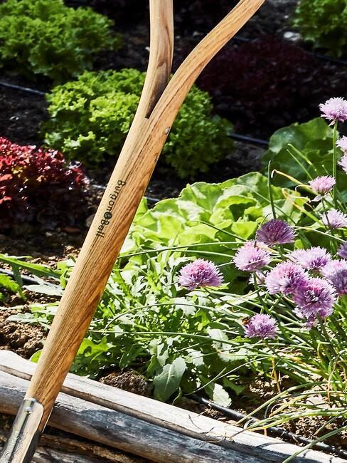houten moestuinbak met mest en bloemen
