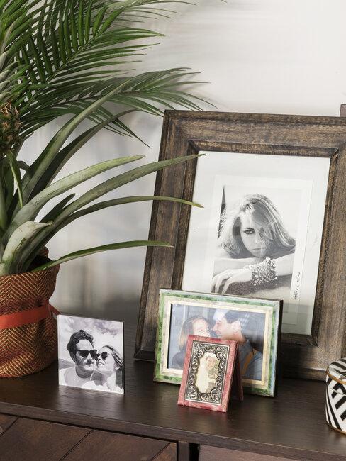 fotolijstjes op bureau met plant