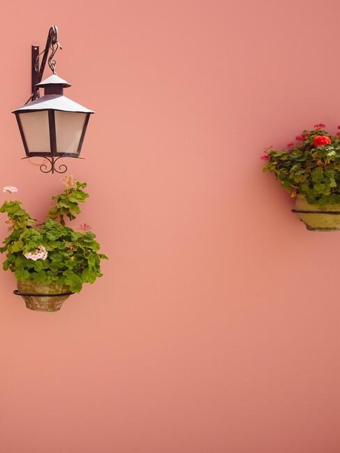 roze muur met aardekleur plantenpotten en zwart windlicht