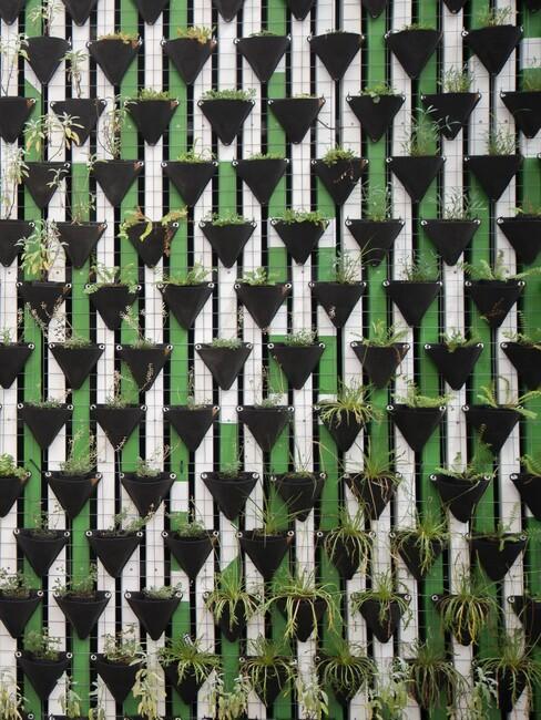muur met zwarte plantenbakken