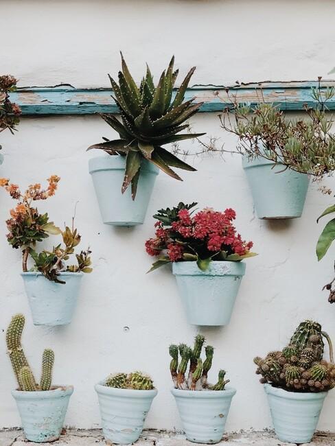witte bloempotten aan de muur