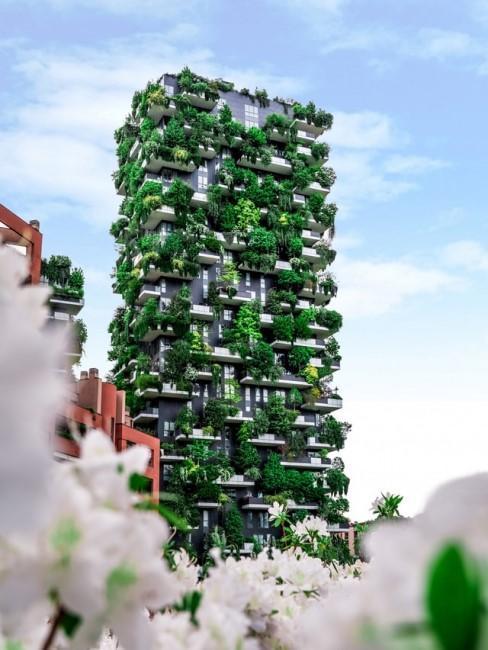 gebouw gevuld met planten