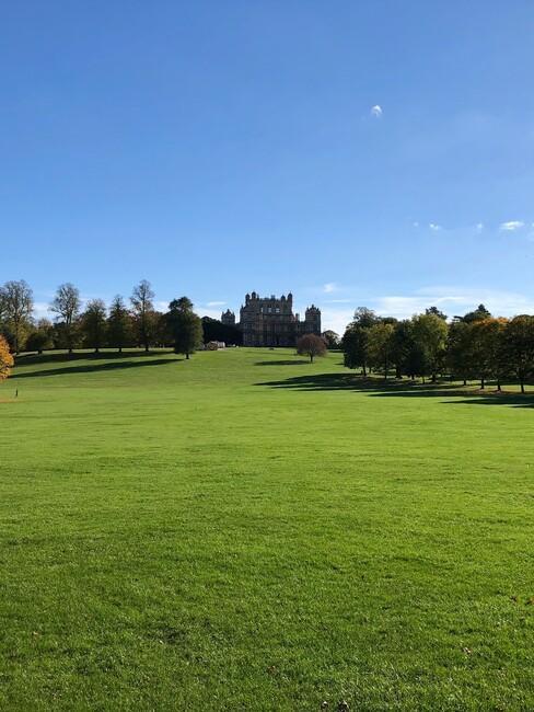 groen grasveld met kasteel