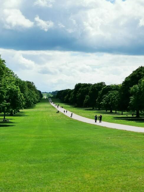 grasveld met een wit pad
