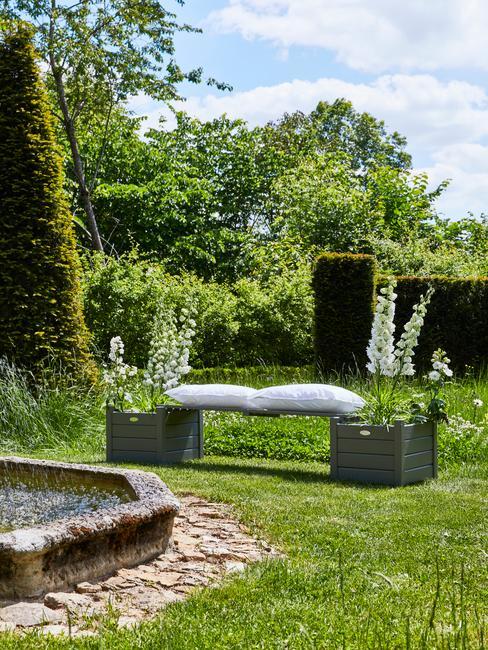 witte kussens en gras met bomen