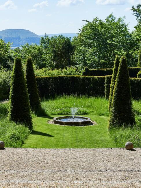 grasveld met fontein en grote bomen