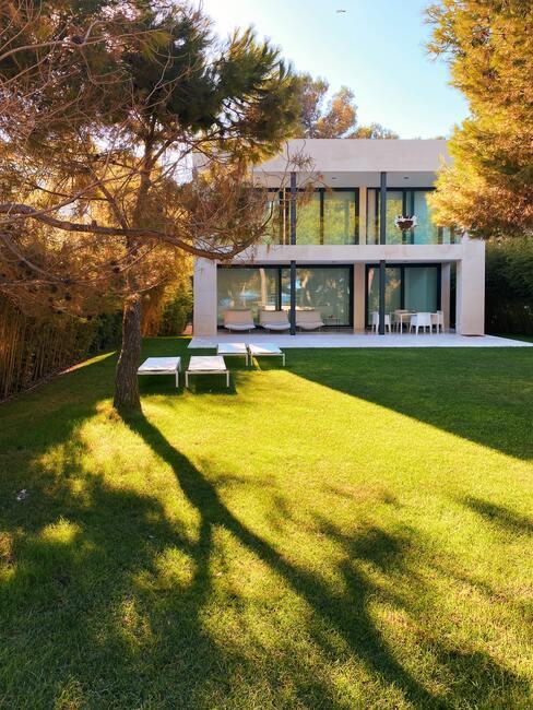 wit huis met grote bomen en kunstgras