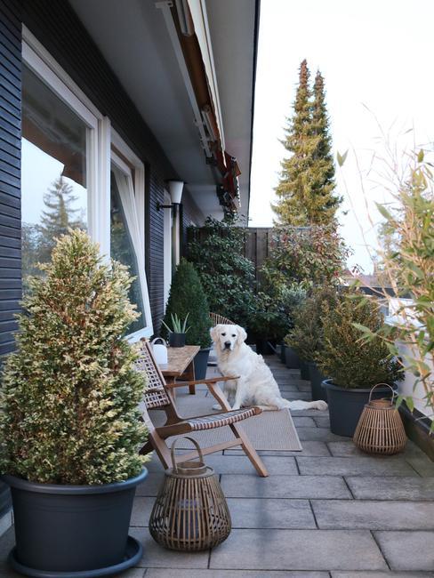 grijze plantenpotten op een balkon