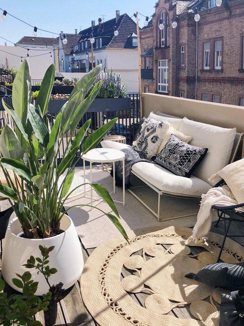 makkelijke planten voor buiten op je balkon