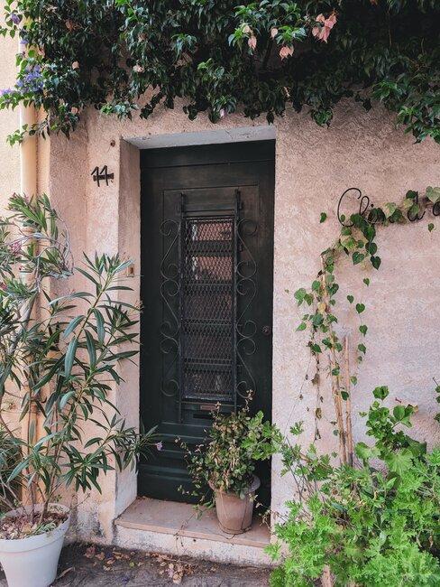 voordeur met klimplanten