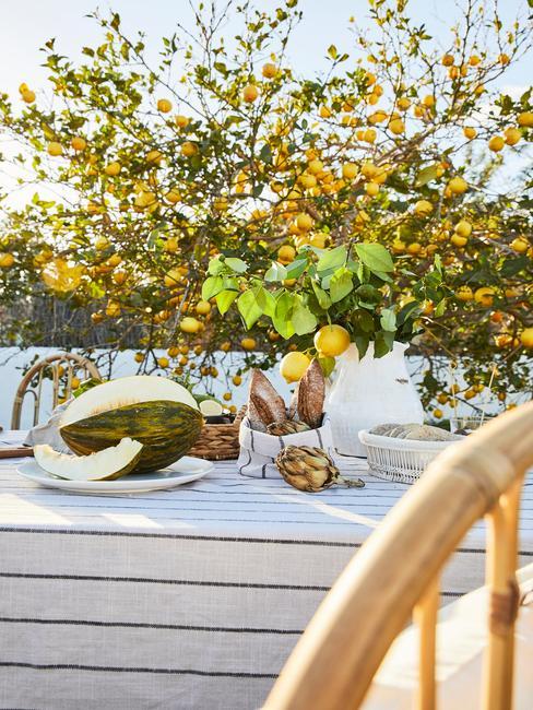 wit met blauw gestreept tafelkleed met houten stoel in een natuurlijke tuin