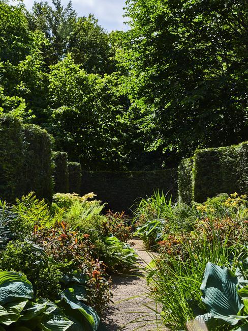 beplanting in een tuin