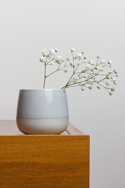 gipskruid in vaas op houten dressoir