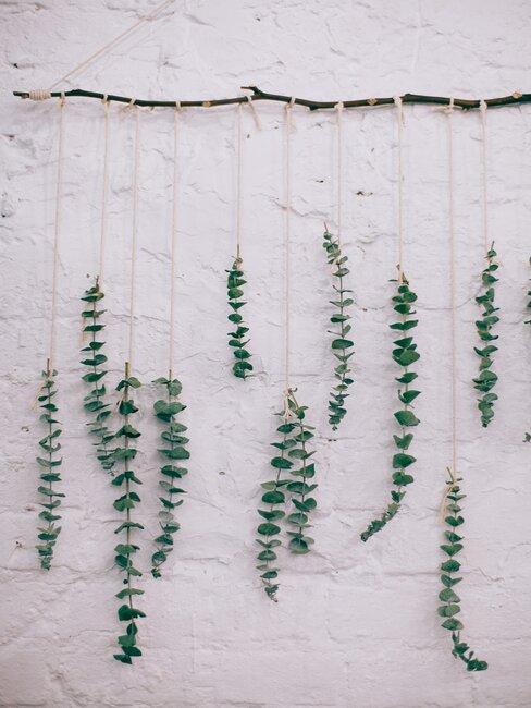 decoratie van takken aan een witte muur