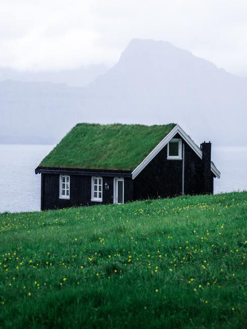 houten huisje met groen dak