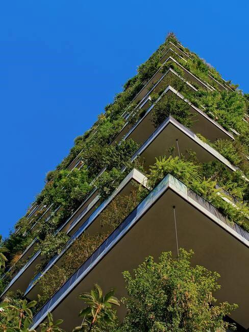balkonnen met planten