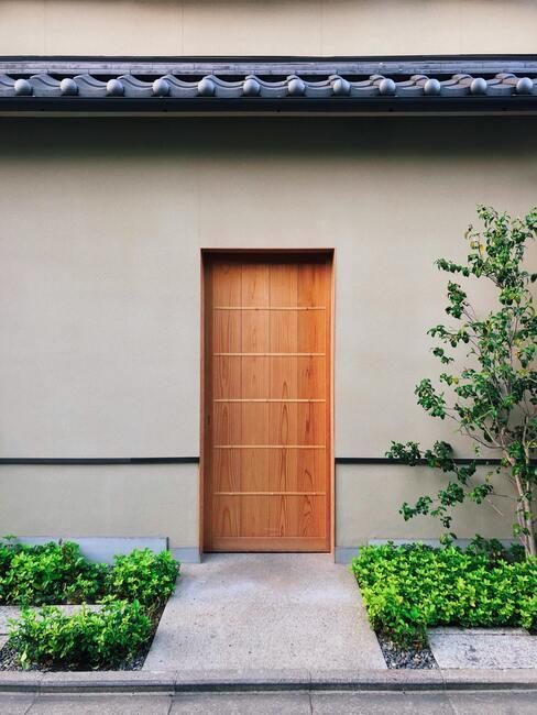 taupe muur met houten deur en groene planten