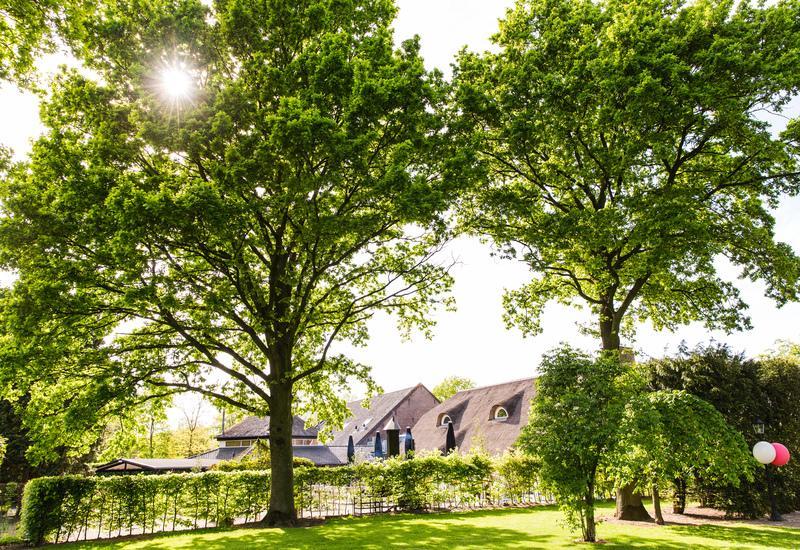 grote bomen met huis met rietenkap