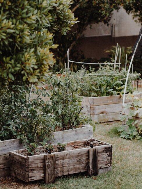 tuin met houten plantenbakken