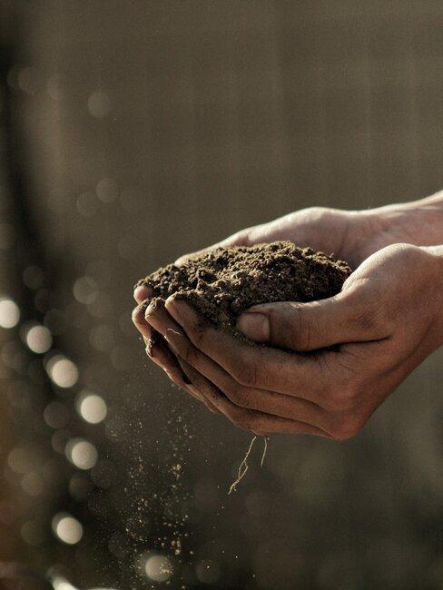 handen in een kommetje die aarde vasthouden