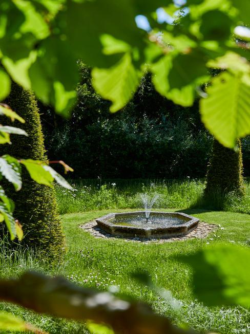 een fontein in een grasveld
