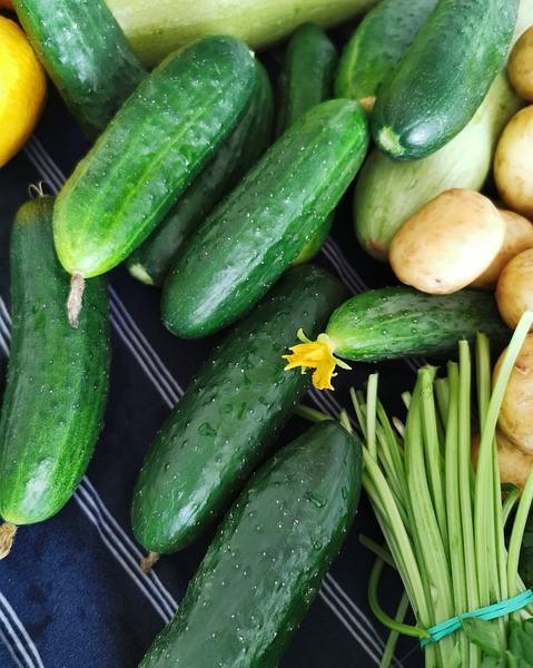 komkommers en aardappelen