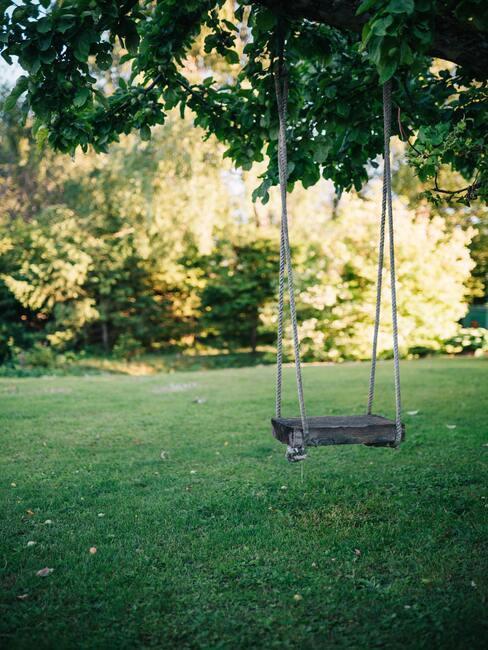 boom met een houten schommel in een kindvriendelijke tuin