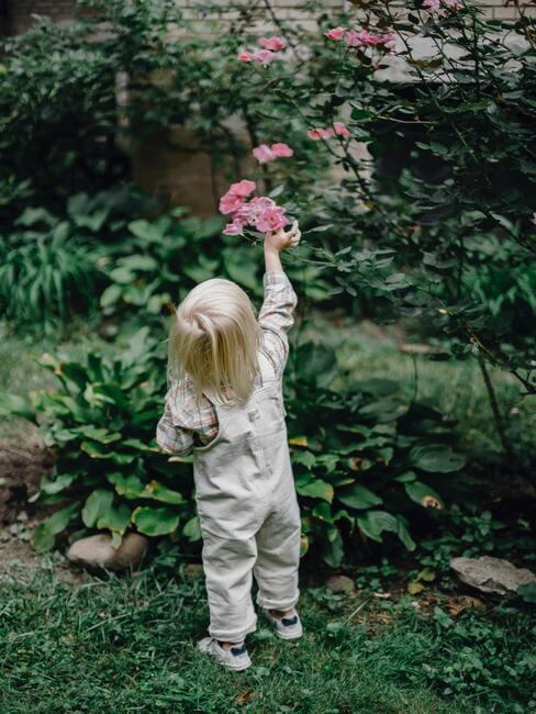 meisje met blond haar die een roze bloem plukt