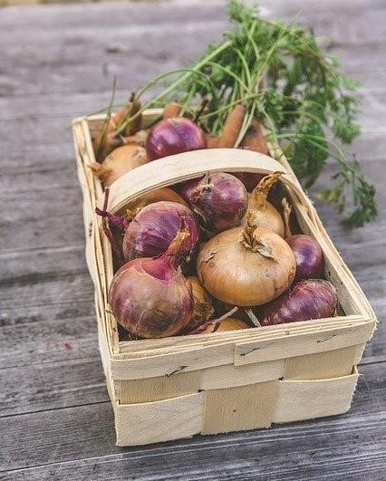 houten kist met verse groenten uit een moestuin