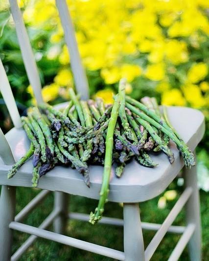 stoel met asperges