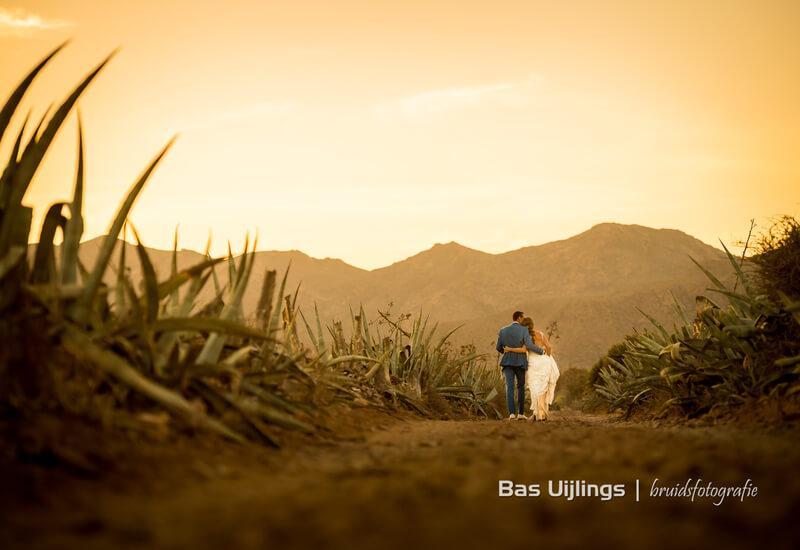 bruidspaar maakt wandeling door veld