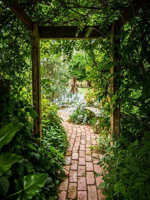 tuin met plantenboog